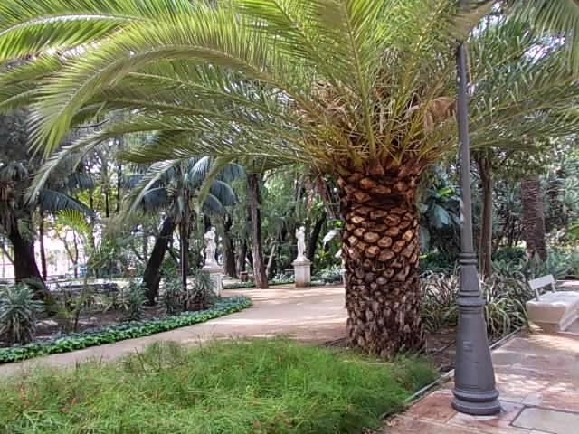 Calle Larios-Malaga