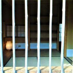 gradina-japoneza-hasselt