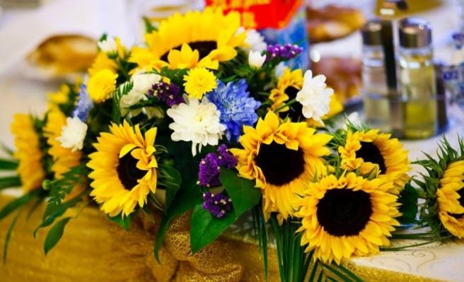 floarea_soarelui3