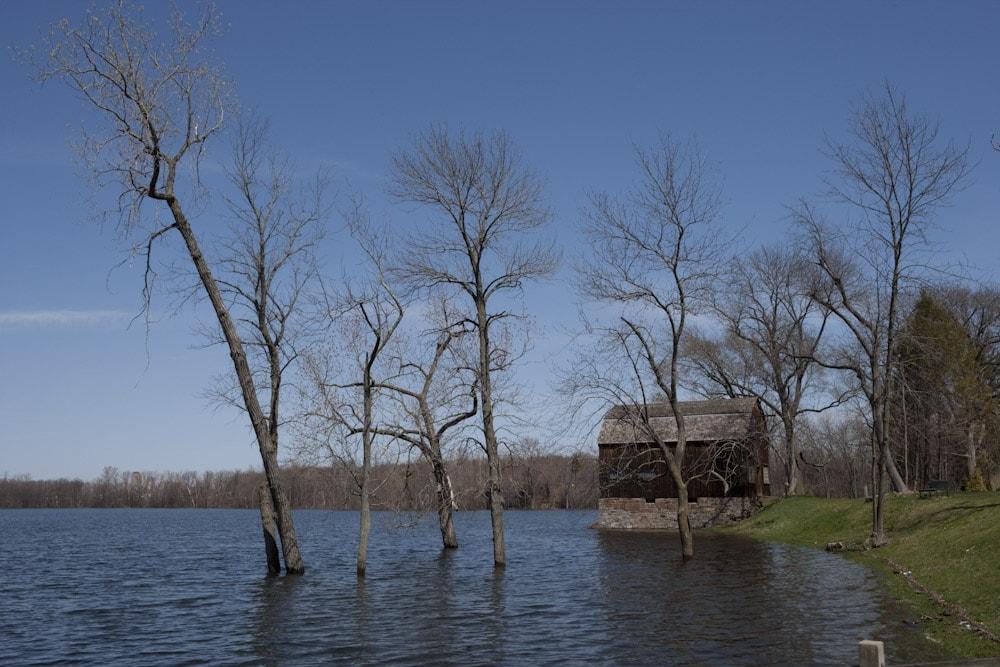 Wethersfield Cove - sursa foto: http://albradenphoto.com/blog