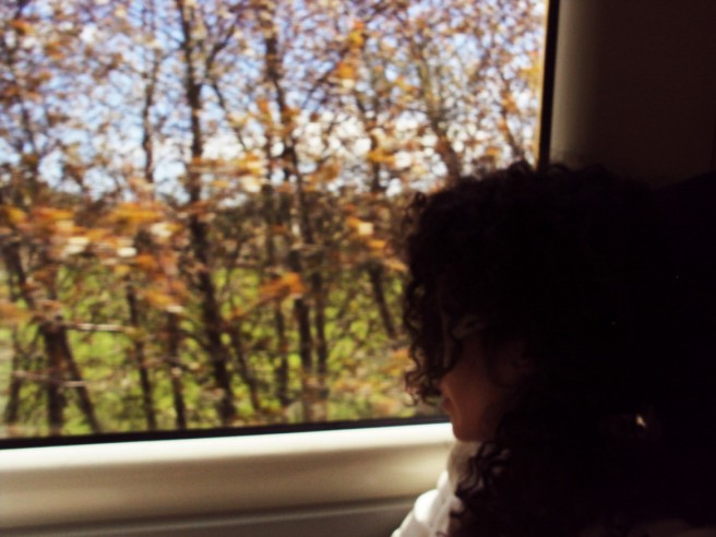 Tren Anglia 1