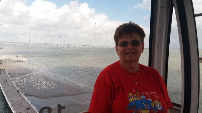 Podul Vasco da Gama în spatele meu