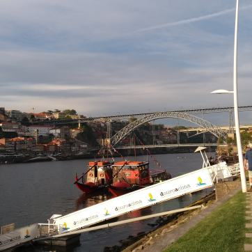 Podul Dom Luis I