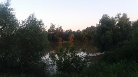 Mureș