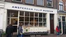 Muzeul Lalelelor