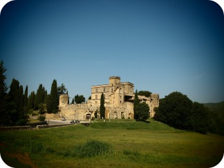 Castelul Lourmrin