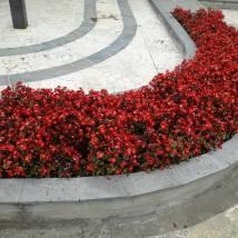 O pată de culoare