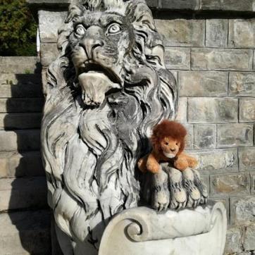 Leul și Leone