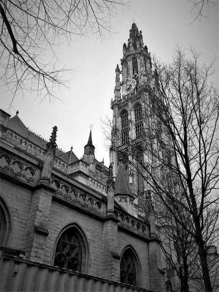 catedrala-antwerp