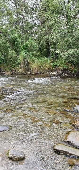 Valea-Zanelor2
